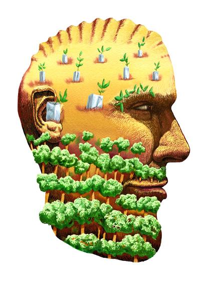 http://davidblaiklock.com/files/gimgs/14_blaiklockreforestation.jpg