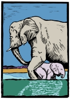 10_elephantbaby.jpg