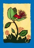 10_fejoa-flower.jpg